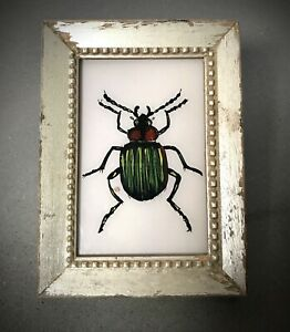VINTAGE INDIAN REVERSE GLASS PAINTING. BETTLE IN ART DECO PERIOD, SILVER FRAME.
