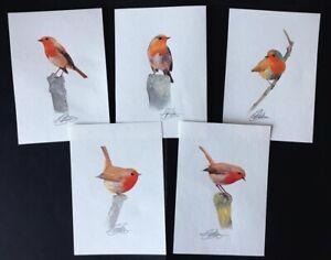 5 ORIGINAL WATERCOLOUR ROBIN BIRD PAINTINGS BUNDLE ART 5.8 x 4.1inch D GOLDING