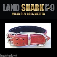 XX-Large Orange Leather Dog Collar with Soft Black Suede Padded Inner Lining