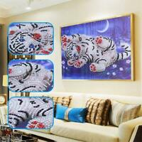 Tiger Drill DIY 5D Diamond Painting Embroidery Cross Crafts Stitch Decor Kit TI
