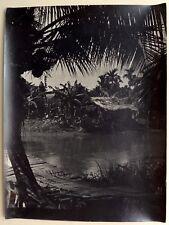 Photo 尼采 nícǎi - Black Jungle - Chine China - Tirage argentique 1950 - 30 x 40