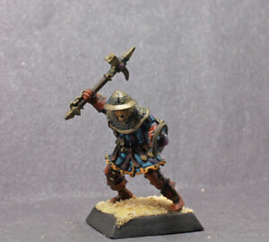 Painted Castle Guard with Ax  and Shield (resin) D & D RPG