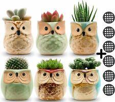 6Pack, 2.5 Inch Flowing Glaze Succulent Pots,Owl Planter/Mini Ceramic Pots,Small