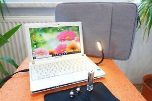 Samsung NC10 Plus Netbook l 10 Zoll l SSD NEU l AKKU NEU l EXTRAS I Windows 10