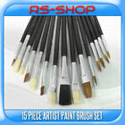 15 Piece Artist Paint Brush Set Brushes Flat & Tipped Different Size And Lengths