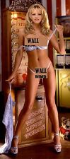 NIKKI SCHIELER Poster PLAYBOY Model Nude Vintage Rare A 36 inch x 18 inch