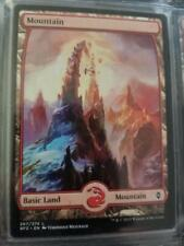 1X mtg NM Mountain (244) - Full Art Zendikar
