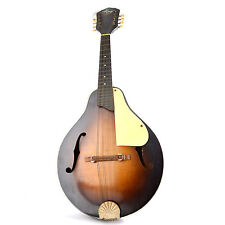 Vintage Mandolins