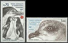 Taaf Fsat Faune Polaire Oiseaux Gorfou Petrel Penguins Birds Sturmvogel ** 1980