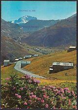 AA4994 Sondrio - Provincia - Livigno - Trepalle - Veduta generale - Cartolina