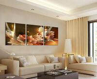 ZWPT116 3pcs beautiful flower 100% hand-painted oil painting decor art on Canvas