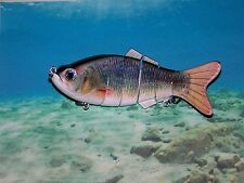 """LIFE LIKE SWIMBAIT, 6 SECTIONS, 7-1/2"""", 19 cm, SHAD, RATTLES, REAL SWIM ACTION"""