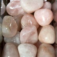 1/4 LB BULK Medium Rose Quartz Tumbled Stone Natural Crystal Wholesale Lot