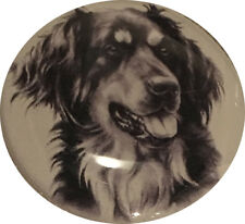 Dog Show Ring Number Clip Pin Breed - Hovawart