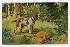 Chien de chasse en action . Hunting dog . Jagd . Hund