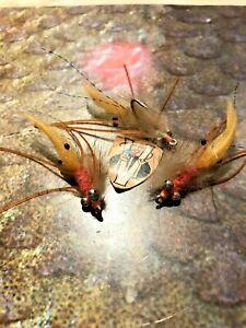 3 V Fly Size 6 Ultimate Hot Pink Mink Shrimp Flexi Leg Bonefish Saltwater Flies