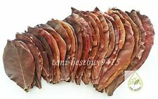 "12 Pcs BIG 9-10"" Ketapang Catappa Indian Almond Leaves for Shrimp Betta Discuss"
