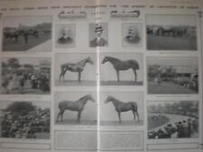 Article Royal Dublin Horse Show 1901 Ireland