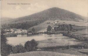Ansichtskarte Bayern  8395  Freudensee bei Hauzenberg