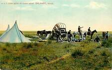 Texas, TX, Dalhart, XJT Cow Boys in Camp Early Postcard