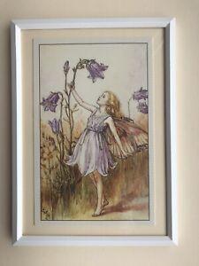 Flower Fairies framed print - Harebell Fairy - Cicely Mary Barker 1925