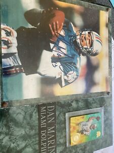 """Frmd Dan Marino Miami Dolphins Signed 8"""" 10 Photo With Certificate"""