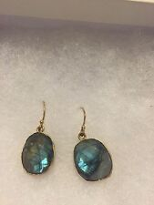 Labradorite Gold Plated Earrings ($179 new)