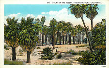Postcard Palms in the Desert Thousand Palms CA Coachella Valley Riverside