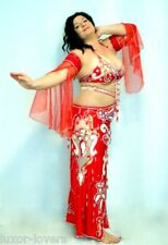 New Egyptian Professional Belly Dance Costume Custom-made bellydance outfit