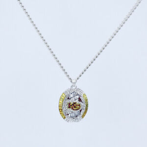 Kansas City Chiefs 2019 Super Bowl Championship Custom Necklace Stainless Steel