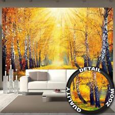 Fototapete goldener Herbst Birken Wald Landschaft Baum Allee Tapete 336 x 238 cm