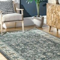 nuLOOM Traditional Vintage Mikayla Classic Floral Area Rug in in Gray