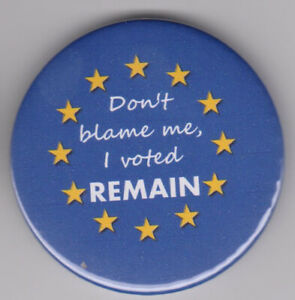 Pro EU, anti-Brexit protest badge: Don't blame me, I voted Remain! European pin