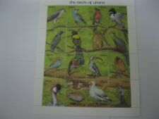 Ghana 1991 bird  sheet of 16 stamps  SC#1345 I201806