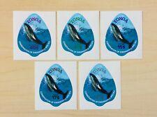 Tonga 1978 Marine Life Whale Stamps Set MNH