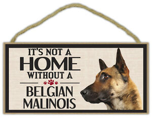 Wood Sign: It's Not A Home Without A BELGIAN MALINOIS | Dogs, Gifts, Decorations