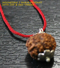 INDONESIAN SEVEN 7 SAATH MUKHI FACET RUDRAKSHA RUDRAKSH PENDANT WITH RED THREAD