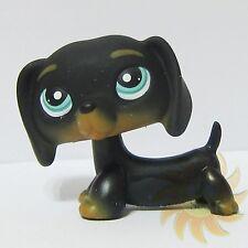 Littlest Pet Shop LPS Animal Toy #325 Chien Teckel Puppy Black Dachshund Dog