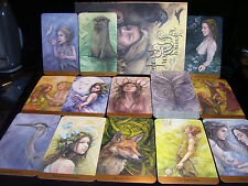 SEALED BRAND NEW! TAROT OF THE HIDDEN REALMS TAROT CARD & BOOK ORACLE FAERY