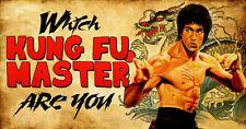 Martial Arts Masters Bruce Lee Steven Segal Van Damme Chow Yun Fat 12 films