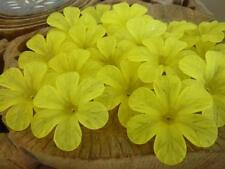20 pce Large Frosted Acrylic Yellow Hibiscus Flower Beads 33mm