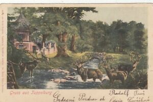 Gruss aus Tuppelburg, Litho glum 1900? F9548