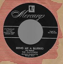 THE GAYLORDS-MERCURY RECORDS-BRING ME A BLUE BIRD/NO ARMS CAN EVER HOLD YOU EX!