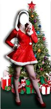 Mme Noël temps Lifesize Découpe en carton présentoir standup Santa Xmas