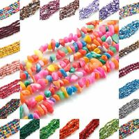 """Shell Natural 15.5""""/31.5""""Gemstone Loose Beads Strand Chips For Jewelry Making"""