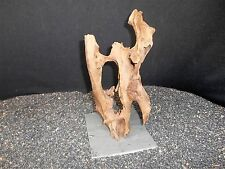 MOUNTED DRIFTWOOD FOR FISH AQUARIUMS REPTILE GARDEN TERRARIUM PLANTS  BONSAI