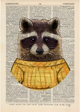 Raccoon in a Dress Dictionary Art Print Animals Clothes Anthropomorphic