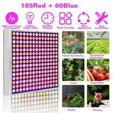 8000W LED Full Spectrum Plant UV Grow Light Veg Lamp Indoor Hydroponic Plant USA