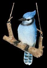 Vogel Figur - Blauhäher auf Ast - Singvogel Vogel Krähe Dekostatue