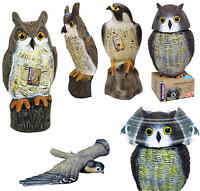 Decoy Falcon & Wind Action Owl Bird Scarer Garden Animal Crow Deter Repeller New